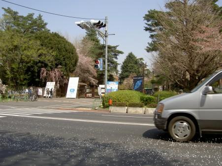 PICT3802.JPG